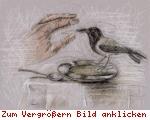 [bild=vögelein(pic_37.jpg)]